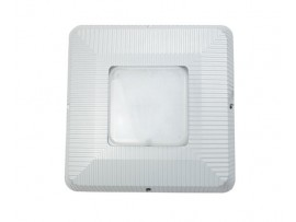 LED Type D LED Gas Station Canopy Lights RL-CNP-100W-D